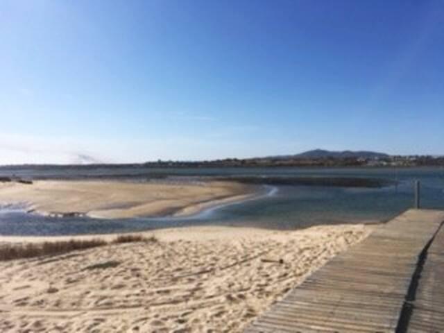 Ria Formosa (4 km)