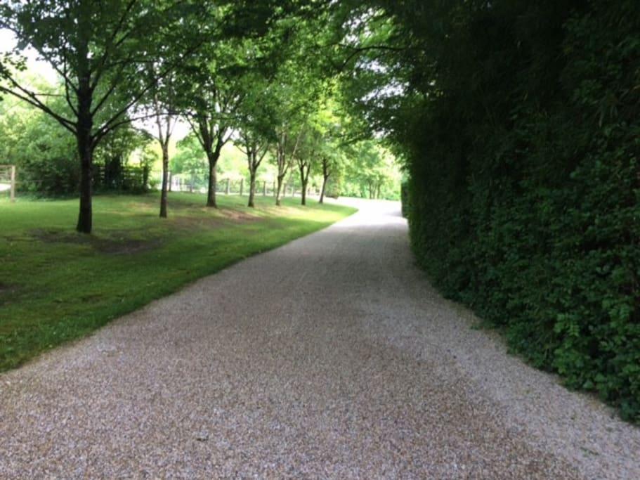 Chemin d'accès de la propriété