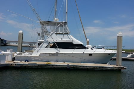 IRRESISTIBLE - 阿兰萨斯港(Port Aransas) - 船