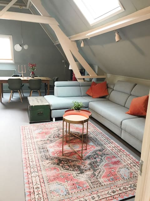 Light, roomy and comfortable city apartment