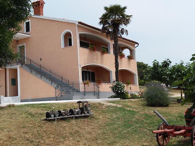 Apartment Fiorela (44851-A1)