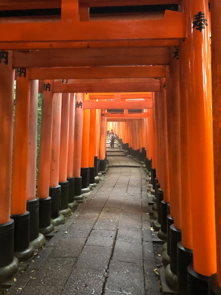 Show you a torii street not crowded much