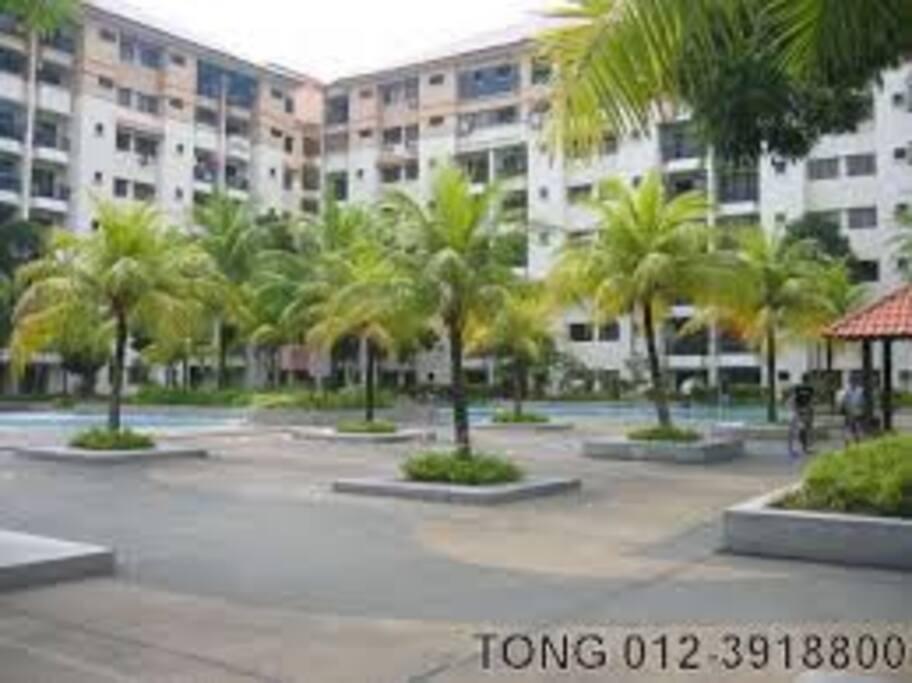 Apartment Swimming Pool Area