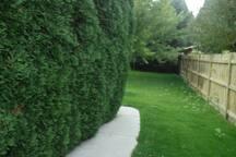 Walkway to backyard