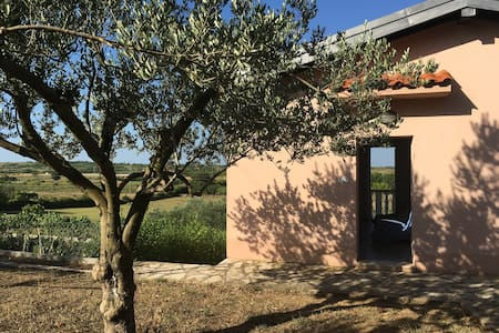 Quiet guest house with lovely view near Zadar