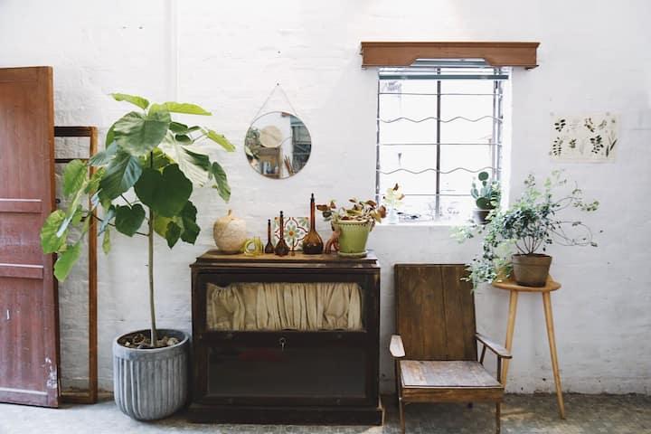 【孤独植物/花园式独栋民宿】藏在市中心的寂静之地