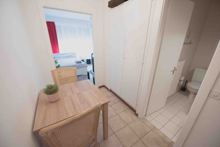 Great apart Geneva center 100m from lake Jet d'eau
