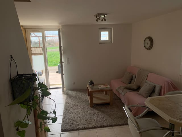 Appartement studio 50 m2