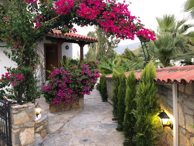Torbamex Villas