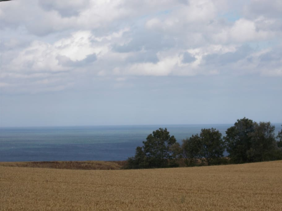 Harvest and sea views