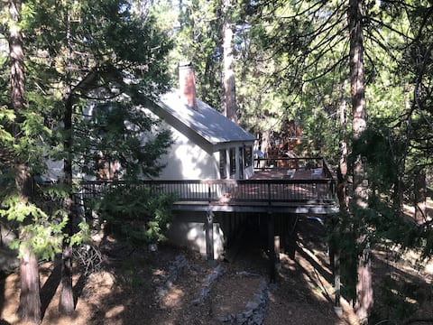 Charming Mountain Cabin, Great Location, WiFi