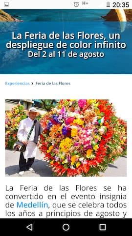 Lo mejor de Santa Elena y sus flores