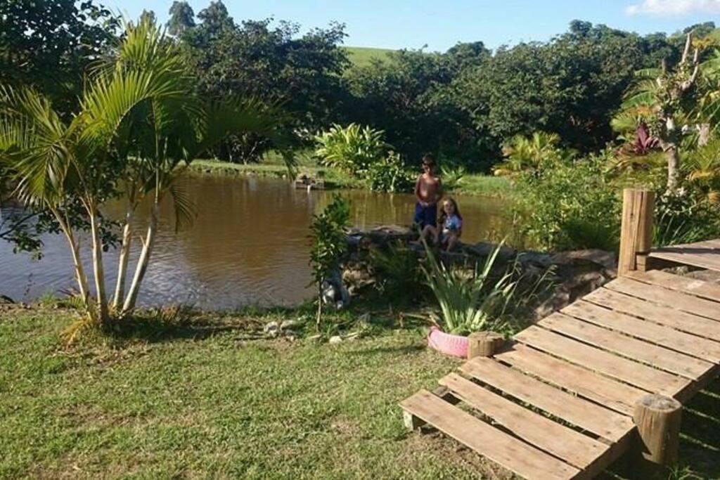Lago de frente a casa.