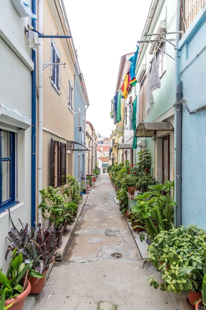 NEW!Hidden Gem House|Typical downtown neighborhood