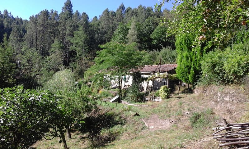 MAS MEUNIER EN CEVENNES - La Vernarède - Rumah