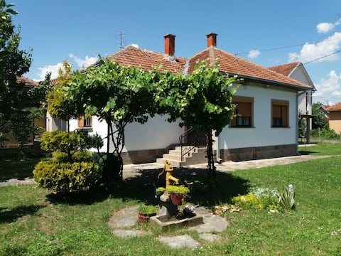 kuća Paunovića