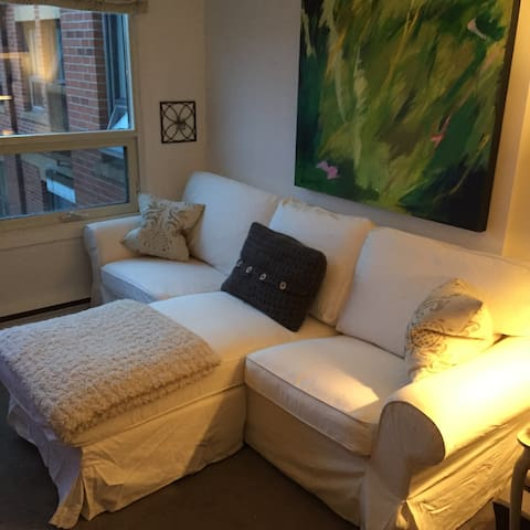 Cozy styled, perfect downtown apt.