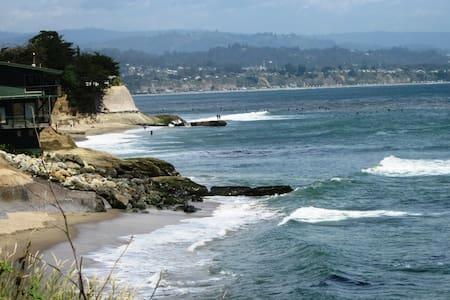 1 Bdrm Santa Cruz Cottage/ Park Off-Street/ Dog OK - Santa Cruz - Guesthouse