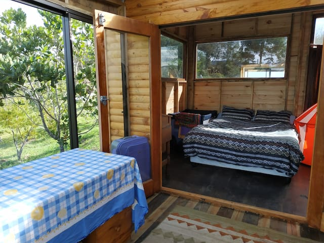 Dinning table with views to a young small  indigenous forest. Double doors to sleeping room.