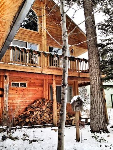 Fireweed Cabin McCall