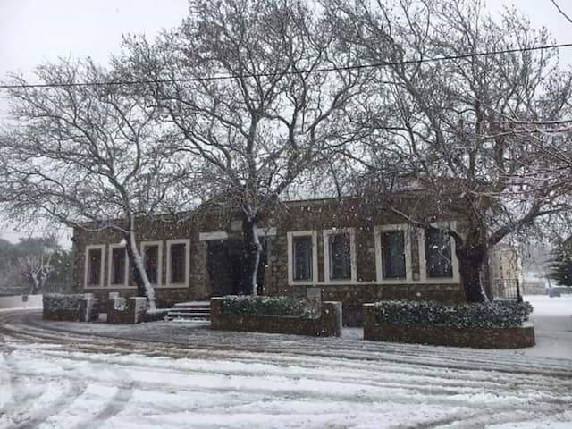 Το Παλιό Σχολείο,παραδοσιακός ξενώνας Πιτυους