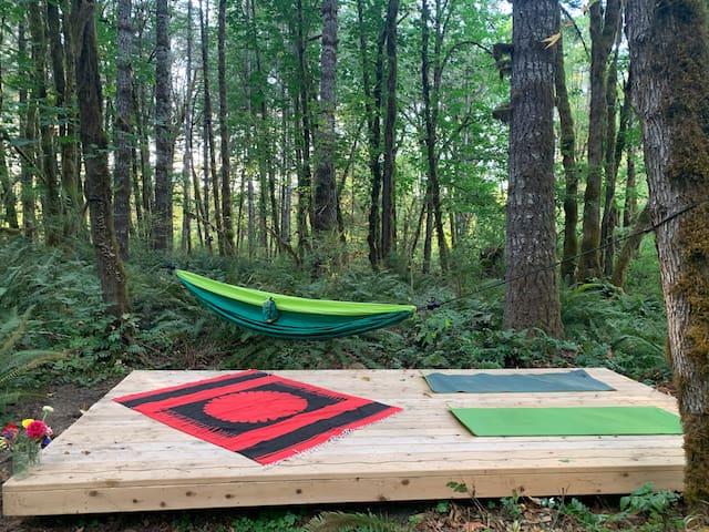 Mckenzie River Camping Magic!