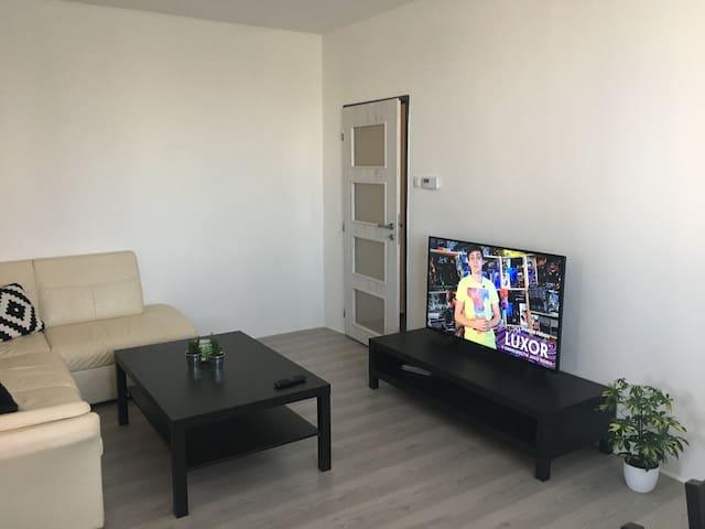 Apartment Jana Vojny