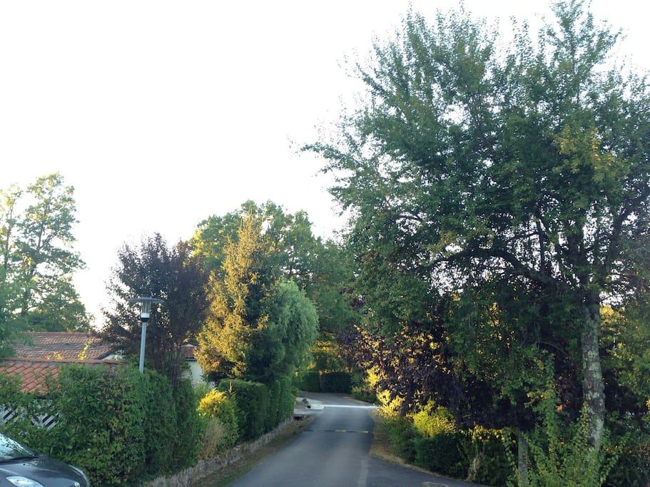 Het uitzicht vanuit de eigen parkeerplaats van Le Camelot op de ru des forsythia's