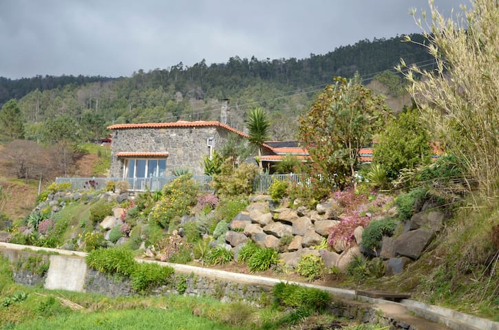 Tranquil, rural location, stunning sea views - Arco Da Calheta - 別荘
