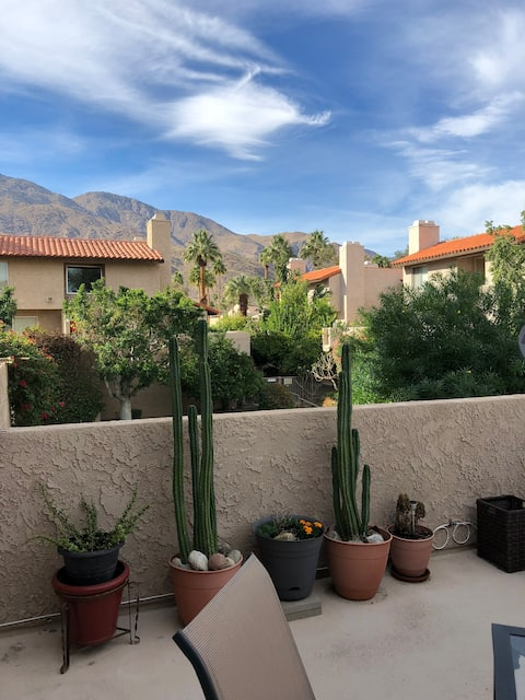 Palm Springs oasis with beautiful Mountain View's