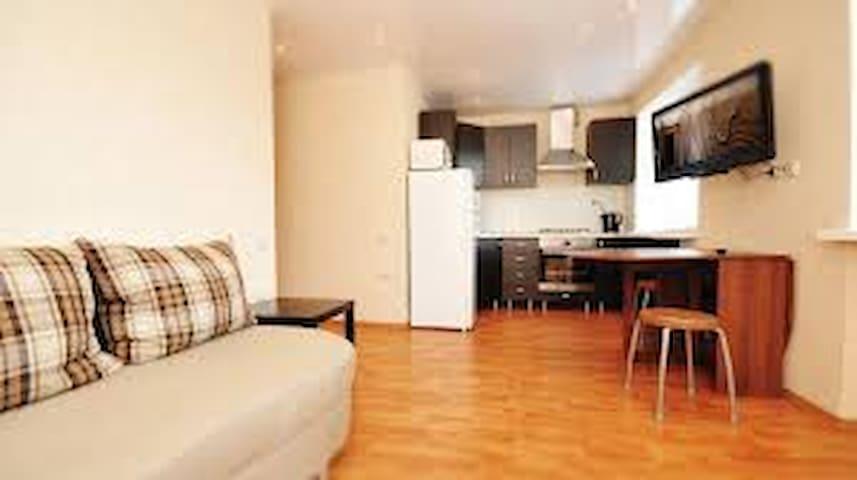 Сдам уютную квартиру в центре - Donetsk - Leilighet