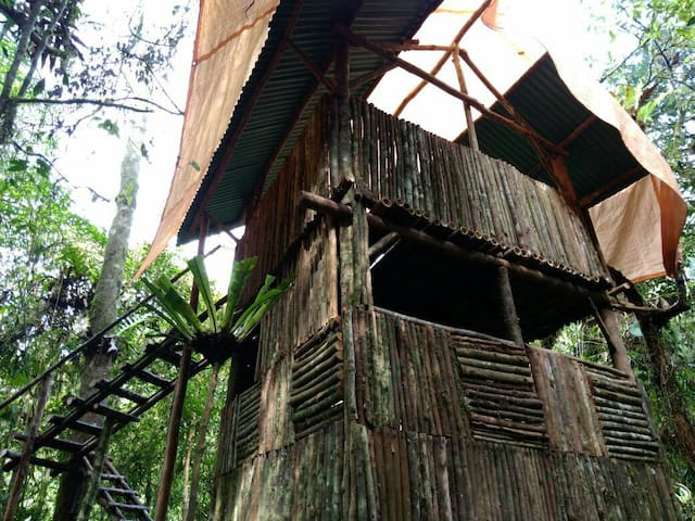 Rinjani Tree House
