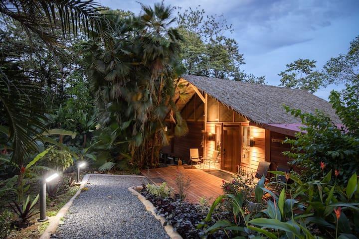 Jungle Villa 5 Star Amenities $1M Ocean Views