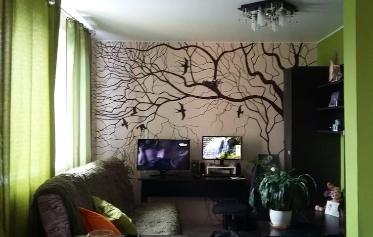 Квартира-студия в г. Сходня - Skhodnya - Leilighet