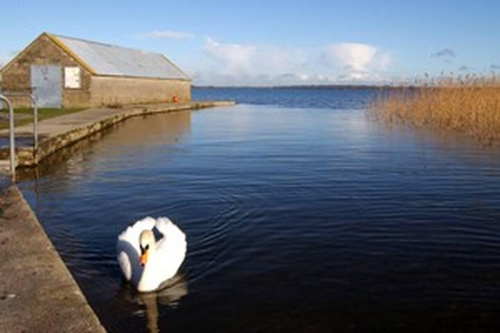 Lough Ennell