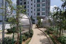 Lifestyle Facilities   Plantation Garden