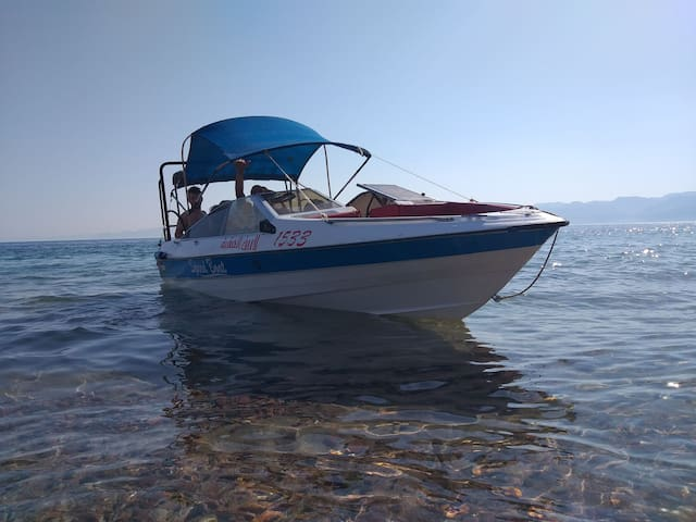 Aqaba for Furnished Apartments  Underwater Diving