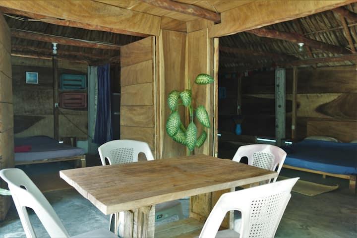 Casa de Papaya 2
