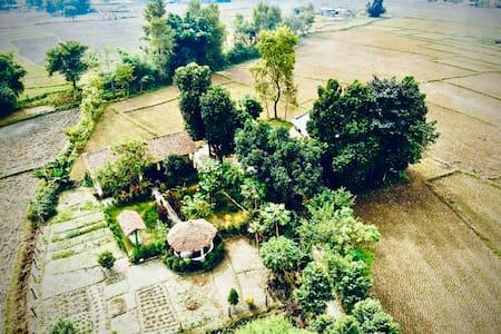 Bardiya eco friendly homestay