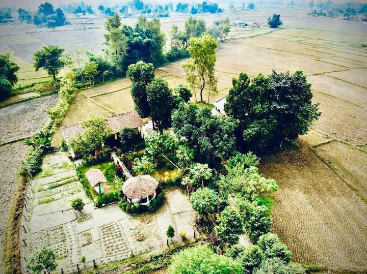 Bardiya eco friendly homestay