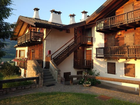 Bright apartment overlooking Val di Fiemme