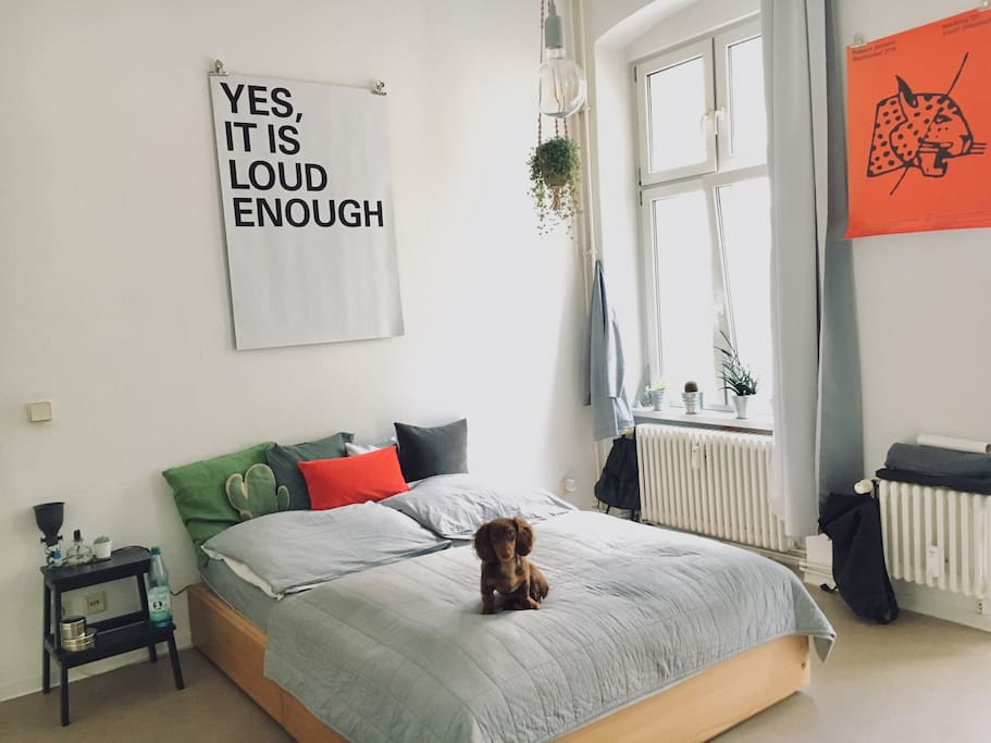 BED // LIVING ROOM *without Puppy