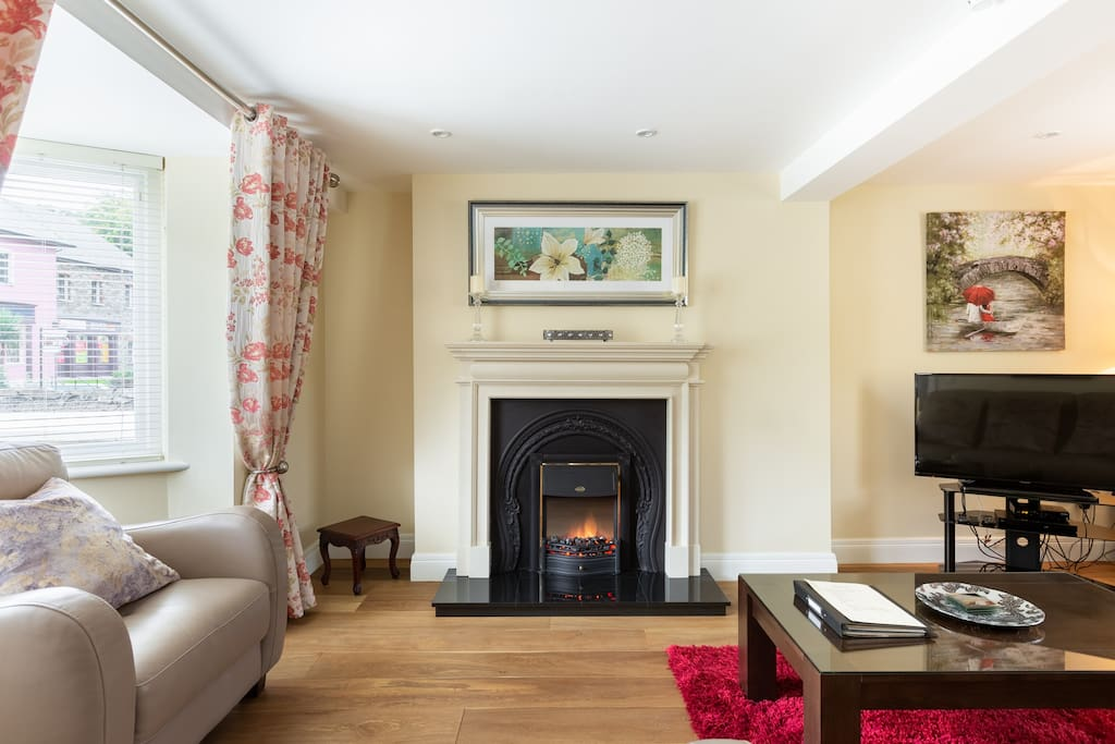 Electric Fire, Flat screen TV with Multi Channels