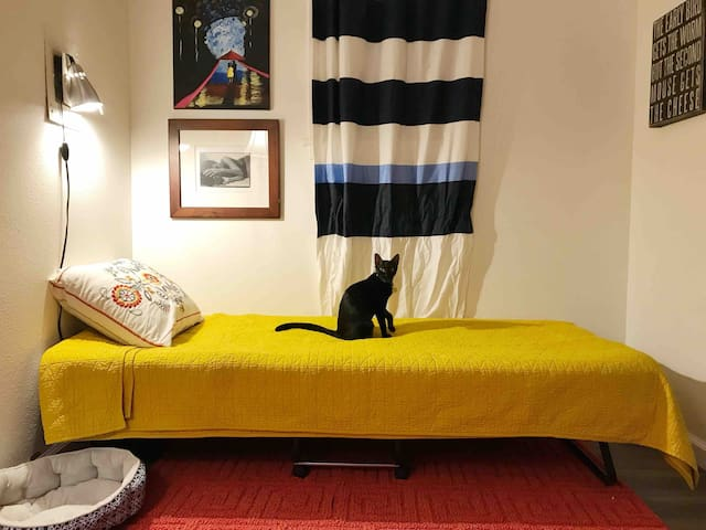 The Cats' Room, a Personable Host, & a Clean Home
