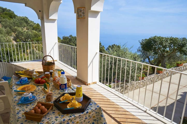 Cozy independent and panoramic house - A670 - Piano di Sorrento - Hus