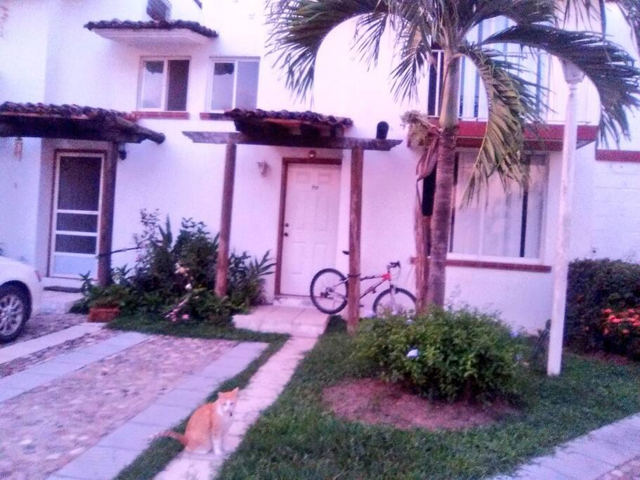 Room 1 at la maison du tango puerto vallarta maisons for La maison du mexique