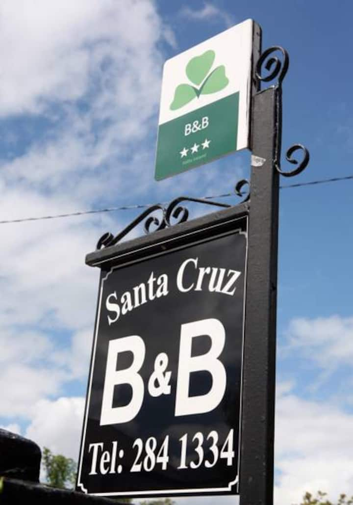 Santa Cruz B&B Dun Laoghaire Twin Room