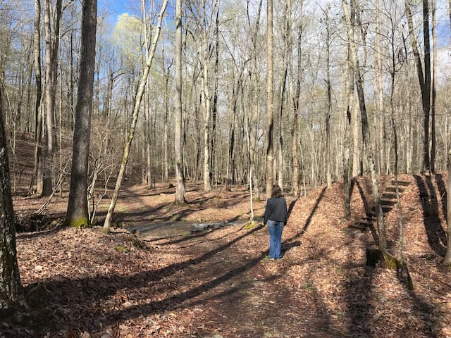 Mayre's Mile Trail with steps to the North Fork Overlook trail in winter