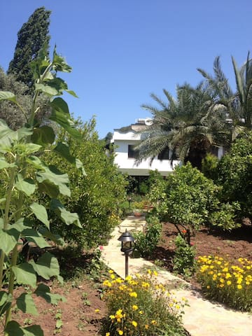 Lovely accomodation in Hisaronu-Marmaris