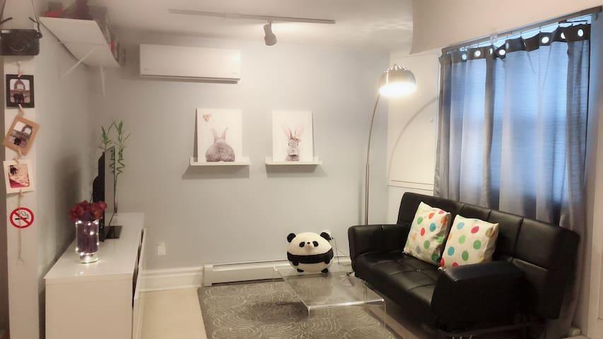 Living room with TV, sofa, AC ...